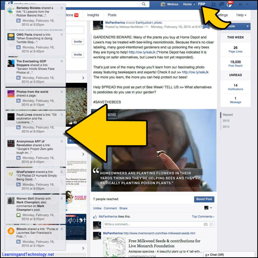 FB Purity Popup Notifications